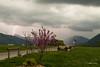 Orage sur les Alpes (MarKus Fotos) Tags: orage orages suisse storm switzerland sturm strike thunder thunderstorm thunderstrike tonnerre chablais canon clouds cloud ciel champeillant hautesavoie alpes alps auvergnerhonealpes rhonealpes gavot