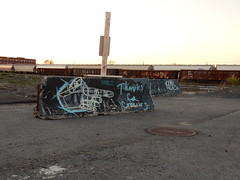 Thanks for Coming (aestheticsofcrisis) Tags: street art urban intervention streetart urbanart guerillaart graffiti postgraffiti rochester new york ny us usa
