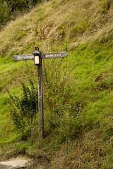 IMG_1215 (Chris_Moody) Tags: hobbiton movie set newzealand hobbit lordoftherings lotr lord rings jackson matamata nz tourism tolkien shire