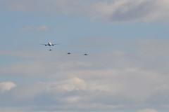 DSC_3806 (@bat1911) Tags: 岐阜基地 航空祭 gifuairbase 航空自衛隊 japanairselfdefenseforce jasdf f4 f4ej phantom phantomii ファントム ファントムii kc767 f2 f2a f15 f15dj eagle イーグル