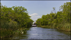 _SG_2018_04_0064_IMG_6725 (_SG_) Tags: usa us florida key west sunshine state united states america island city roundtrip everglades national park american alligator mile nine pond