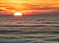 The everlasting wait (Robyn Hooz (away)) Tags: lozzo castelnuovo nebbia sunset tramonto cielo gold she sigh fog mist sole sun disk disco