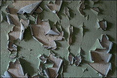 Abandoned house 14.1 (ducatidave60) Tags: fuji fujifilm fujinonxf23mmf14 fujixt1 abandoned decay dereliction urbandecay urbex urban