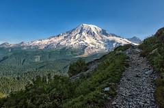 Hello Mt. Rainier (Philip Kuntz) Tags: pinnaclepeaktrail pinnaclepeak hikes hiking mtrainier volcano mtrainiernationalpark washington