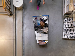 Panda-Shopping (Werner Schnell Images (2.stream)) Tags: ws ikea panda shopping einkaufswagen