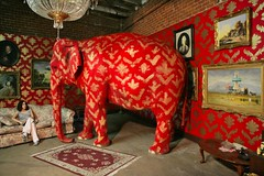 The Elephant in the Room by #Banksy (dullhunk) Tags: elephant banksy losangeles barelylegal tai elephants warehouse california america elephantintheroom room