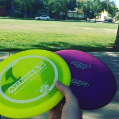 Practicing Disk Golf In the park (coltsgardenspace) Tags: disk golf practice diskgolf sports hot sunburn