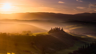 Golden Tuscany.