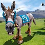 Democratic Donkey - Caricature thumbnail