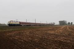 E10 1239 in kobaltblauw / beige met de trein van Eisenbahn freunde Witten te Salzbergen (daniel_de_vries01) Tags: e10 1239 kobaltblauw beige met de trein van eisenbahn freunde witten te salzbergen
