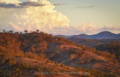 Piallamore View - Tamworth Area - NSW (paulbartle - Shot2frame Photography) Tags: storm cloud piallamore dungowan tamworth 2340 visitnsw visttamworth nsw newsouthwales sunset shot2frame shot2framephotography hillside dramatic