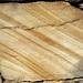 """Liesegang banding"" in quartzose sandstone (Upper Paleozoic; quarry near Crossville, Tennessee, USA) 2"