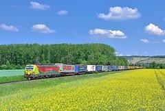 AlphaTrains/TX Logistik 193 557 Himmelstadt (tobias.unsin) Tags: train tx txl logistik locomotive lok landschaft maintal railway rail railroad zug güterzug germany bahn bavaria bayern