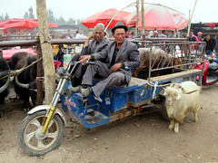 Sunday Livestock Market (D-Stanley) Tags: livestock market farmers kashgar xinjiang china