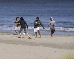 DSC08486 (GusTheArtist) Tags: yescoast scrp sonomacounty regionalparks pacificcoast doran doranbeach ocean beach