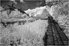 Incline railway infrared (Hugh Stanton) Tags: rail inclined cottage woods
