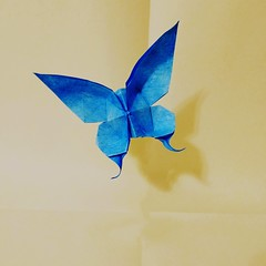 Origami Butterfly (Sasha CraftSpace) Tags: origami butterfly oil pastels oilpastels art paper oneuncutsquare sashacraftspace evibinzinger printerpaper wildlife beauty insect