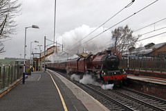 45699 - Carluke (Andrew Edkins) Tags: 45699 galatea jubileeclass steamtrain rain carluke railwaystation scotland uksteam travel trip thegreatbritainxi speed april 2018 spring mainlinesteam railtour excursion geotagged canon light lms stanier people