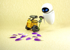 I Picked This For You Eve. ... Oh!! (Skyline:)) Tags: walle eve petals funny smile humour smileonsaturday separatepetals eyes dof purple yellow white