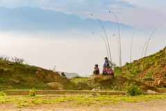 _Y2U1866.0313.Sa Pả.Sapa.Lào Cai (hoanglongphoto) Tags: asia asian vietnam northvietnam northwestvietnam people dailylife children childrens hmongpeople hmongchildren thehmong sunlight sunny sky mountain flanksmountain mist canon canoneos1dx canonef70200mmf28lisiiusm tâybắc làocai sapa sapả người trẻem ngườihmông trẻemhmông cuộcsống đờithường life nắng núi sườnnúi sươngmù