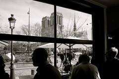 Si finiva sempre per tornarci, a Parigi (margot 52) Tags: parigi paris france francia libreriashakespearecompany caffè notredame îledelacité bn