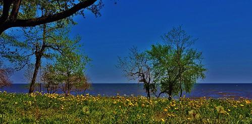 Chesapeake Bay At Fort Howard