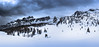 Snowstorm (Ettore Trevisiol) Tags: ettore trevisiol nikon d7200 d300 friuli tree sunset blue hour goldenhour dolomiti snow cortina dolimites winter