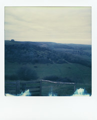 Harting Down (Skink74) Tags: colorsx70 england film hartingdown impossibleproject instant polaroid polaroidlandcamera sussex sx70 sx70alpha1se uk westsussex roidweek polaroidweek2018 landscape downs southdowns