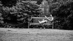 Resting and reading in Victoria Embankment Gardens, London #49 (Streets.and.Portraits) Tags: reading rest resting london unitedkingdom greatbritain monochrome people park victoria ebankment bench blackwhite blackandwhite bw nikon d7200 woman asian asiatic england gb