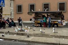 Vatican City 2018 (Matt Hunt.) Tags: candid street streetphotography seagul vatican vaticancity