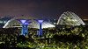 Gardens by the Bay, Singapore -7451 (Matty 8o) Tags: singapore outdoor outdoors vacation holiday travel travelling canon canon700d 700d lens dslr photography photos photo photograph photographer marina bay marinabay marinabaysands canon1855mm 1855mm 1855 beautiful light lights night nightshots shot dark view long exposure longexposure city love gardens gardensbythebay asia tourism tourist nightphoto nightphotography hobby