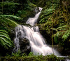 Waterfalls in Paradise (Amazing Aperture Photography) Tags: water waterfall nature landscape river longexposure sony sonya6000 green foliage plants flora trees bushes jungle forest rainforest hawaii hilo garden botanicalgarden tropical lush beautiful hawaiitropicalbotanicalgarden onomeafalls