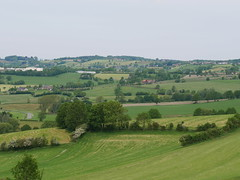 Ardennen (Berliner1963) Tags: landscape landschaft view aussicht field grasslands felder wiesen panorana green grün wallonie ardennen belgique belgien europe europa