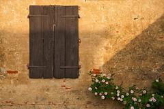 Ben venga Maggio... (Jean-Pierre54) Tags: maggio rosa