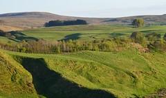 Irvine Valley, Ayrshire, Scotland. (Phineas Redux) Tags: irvinevalleyayrshirescotland ayrshirescotland scottishlandscape scotland