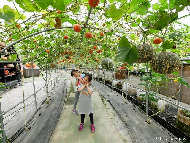 旺山休閒農場-1270041