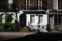 Dr Normandy I presume... (aljones27) Tags: london house light morning person pedestrian pavement shadow blueplaque drnormandy dralphonsenormandy street suburb suburban housing window windows