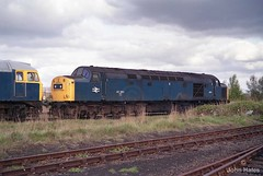 40060 at March on 06 May 84. (John_Hales) Tags: rail railway train trains class40 br britishrail locomotive networkrail kingslynn march englishelectric whistler