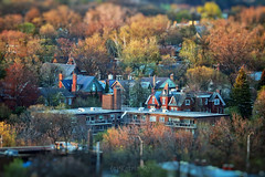 Minature Town in Autumn Colours of Spring (Katrin Ray) Tags: minaturetowninautumncoloursofspring toyrontosgoldenspringinsunsetlight transformationofmay tilfshift may miniaturestyle digimagic toyrontolife toyland colours green brown orange trees maple ash elm ontariotrees sunset spring buildings rosedale toronto ontario canada katrinray dreamscapesoftoronto photoshoptiltshift tiltshift canonphotography canon eos rebel t6i 750d