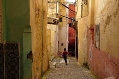(Jpierrel) Tags: fuji fujifilm jpg maroc meknes morocco xt20 street color colors rue couleurs meknès medina xf1655mmf28 fujifilmxt20
