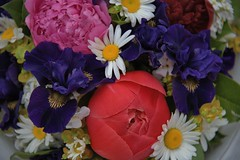 Flowers To Brighten Your Day (Scott 97006) Tags: flowers colorful pretty beauty nature petals variety bouquet