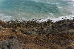 South Coast Palette (Schlingshot Photography) Tags: cliffs lonepine southernocean waves breakingwaves rocks swell palette vegetation saltbush schlingshot tonykemp sleafordbay