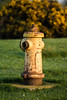 Cold war relic (terry@sevensixty images) Tags: bbowt hydrant coldwar greenhamcommon landscape canoneos760