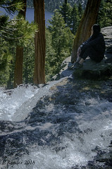 Sitting by a Waterfall (Greatest Paka Photography) Tags: waterfall water eaglefalls laketahoe emeraldbay rocks precipice edge forest blue people