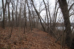 Morning Visit to Waterloo Recreation Area (Chelsea, Michigan) - April 21, 2018 (cseeman) Tags: parks stateparks michiganstateparks departmentofnaturalresources michigandepartmentofnaturalresources chelsea michigan waterloo waterloorecreationarea eddydiscoverycenter waterloopinckneytrail trees trails paths nature publicparks wildlife waterloorecreationareaapril2018 morning quiet eddydiscoverycentertrails discoverycentertrails waterloostaterecreationarea