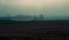 amish farmer / foggy morning (bluebird87) Tags: farm field amish farmer horses dx0 c41 epson v800 film 35mm nikon f100 lightroom