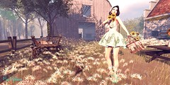 Someday, all the love you've given away, will find its way back to you, and it will finally stay. (๓คเค๓ςкєєภคภ) Tags: sunflowers prismdesigns flowers zenith farm friday monso maiamckeenan justmaia blog spring
