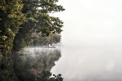 Lake and mist (mystero233) Tags: mist fog morning lake muskoka lakes ontario canada north america bruce tree reflection outdoor landscape