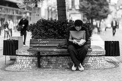 Der Leser (/Holger Blaskowski) Tags: prag reading book buch man prague praha outdoors people blackandwhite women sitting bench urbanscene youngadult lifestyles men parkmanmadespace adult city student street