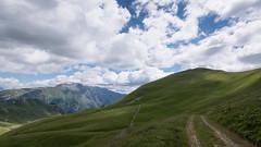 Pâturages à l'Alpe du Grand Serre (Isère) - France (pascal548) Tags: